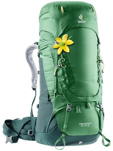 Рюкзак Deuter Aircontact 60 + 10 SL (leaf-forest)