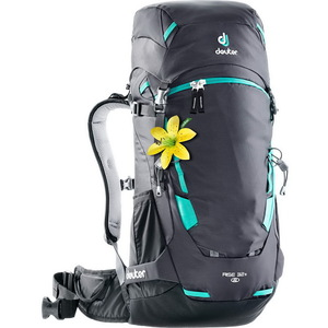 Рюкзак Deuter Rise 32+ SL (graphite-black)
